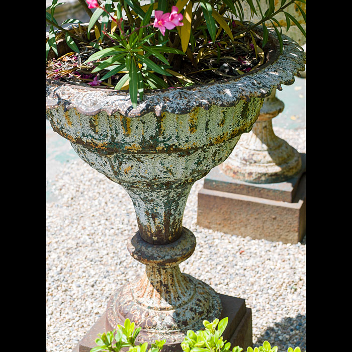 A pair of cast iron Victorian garden urns