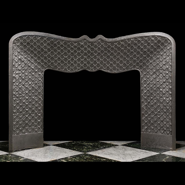 Louis XVI Rococo style wide cast iron fireplace insert