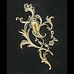 Early 20th century Rococo style brass Fire Screen