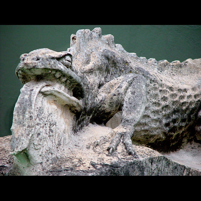 A Salamander carved in Composition Stone