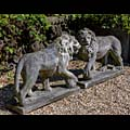 Medici Lions Stone Florence 20th Century | Westland London