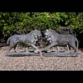 Prowling Stone Medici Lions Florence  | Westland London